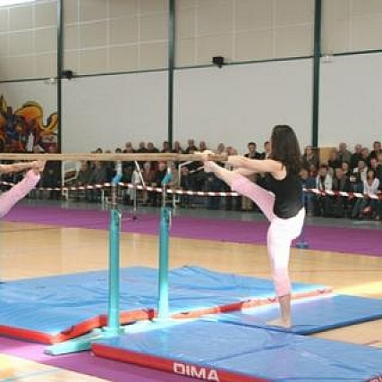 gymnastique-agres2.jpg